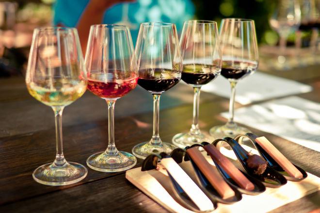 Variedad de vinos para maridaje